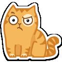 {cat22}